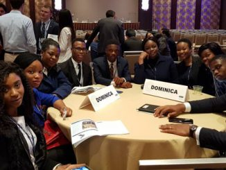 Covenant students and their Chaperon, Dr. Oluyemi Fayomi (3rd Left) representing Dominican Republic at the National Model United Nations 2018